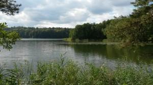 See Karlshof